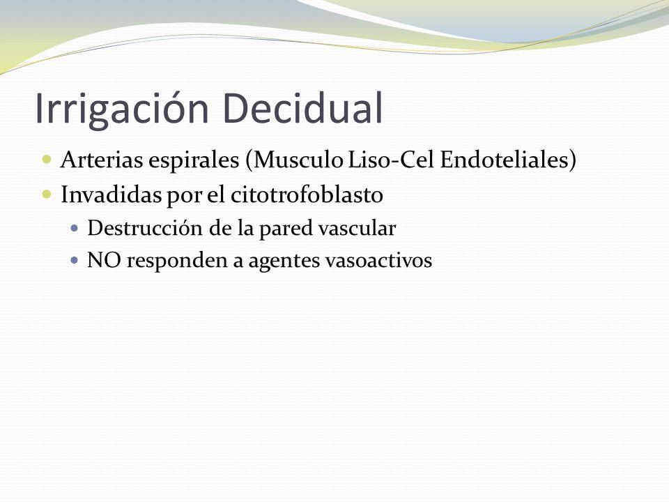Irrigación Decidual Arterias espirales (Musculo Liso-Cel Endoteliales) Invadidas por el citotrofoblasto Destrucción de la pared vascular NO responden