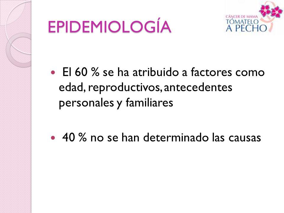 EPIDEMIOLOGÍA El 60 % se ha atribuido a factores como edad, reproductivos, antecedentes personales y familiares 40 % no se han determinado las causas