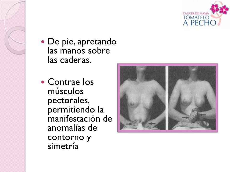 De pie, apretando las manos sobre las caderas. Contrae los músculos pectorales, permitiendo la manifestación de anomalías de contorno y simetría