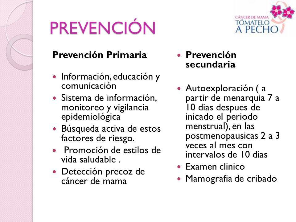 PREVENCIÓN Prevención Primaria Información, educación y comunicación Sistema de información, monitoreo y vigilancia epidemiológica Búsqueda activa de