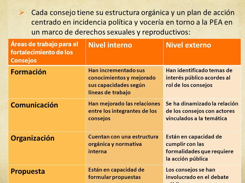 Cada consejo tiene su estructura orgánica y un plan de acción centrado en incidencia política y vocería en torno a la PEA en un marco de derechos sexu