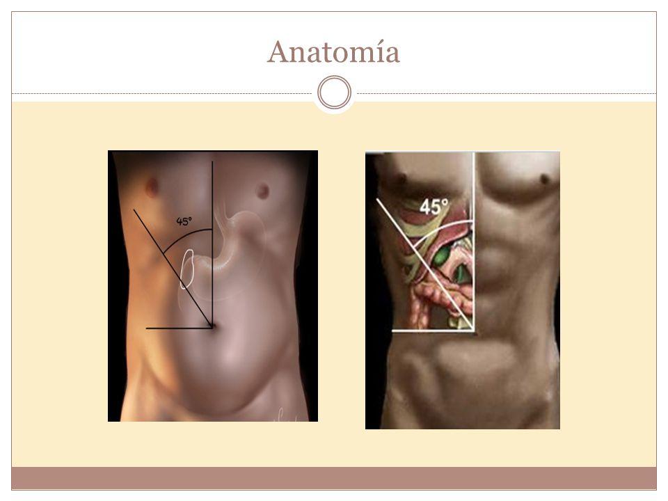Ultrasonido de abdomen: http://www.gastromerida.com/pdf/gastro/clases/ultrasonido.pdf http://www.gastromerida.com/pdf/gastro/clases/ultrasonido.pdf Vesícula Biliar Longitud: 8 a 10 cm Diámetro AP: 4-5cm Diámetro pared: 2-3mm Capacidad: 50ml Anatomía