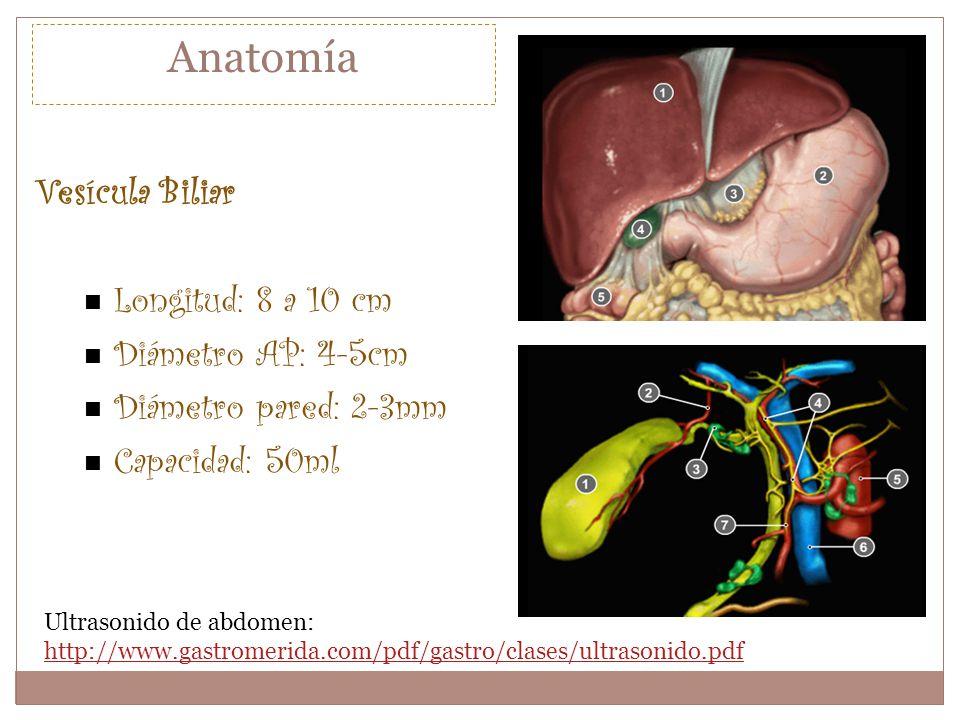 Ultrasonido de abdomen: http://www.gastromerida.com/pdf/gastro/clases/ultrasonido.pdf http://www.gastromerida.com/pdf/gastro/clases/ultrasonido.pdf Ve