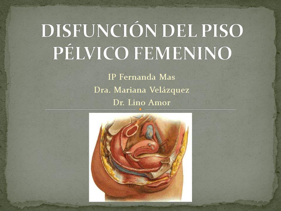 IP Fernanda Mas Dra. Mariana Velázquez Dr. Lino Amor