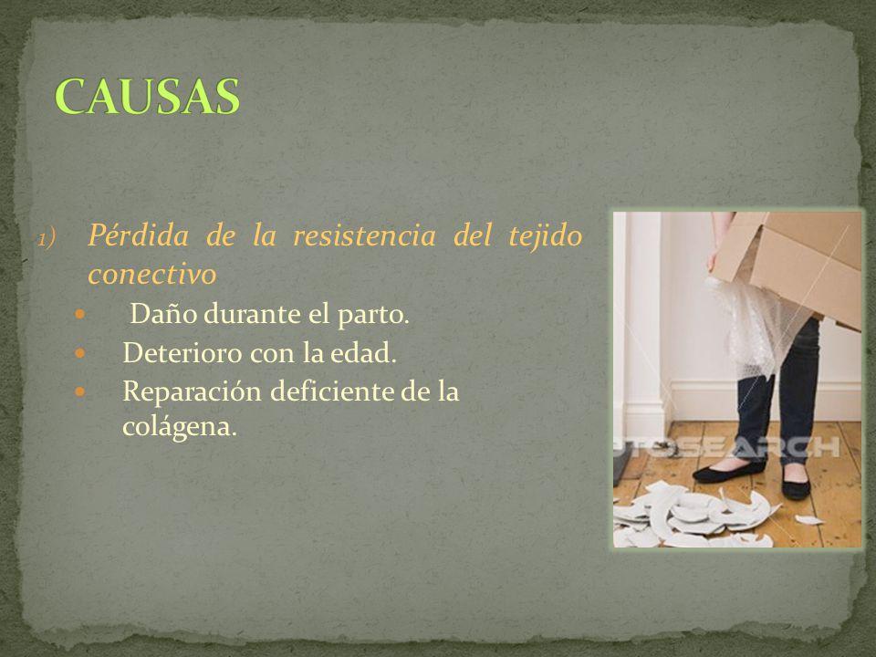 1) Pérdida de la resistencia del tejido conectivo Daño durante el parto. Deterioro con la edad. Reparación deficiente de la colágena.