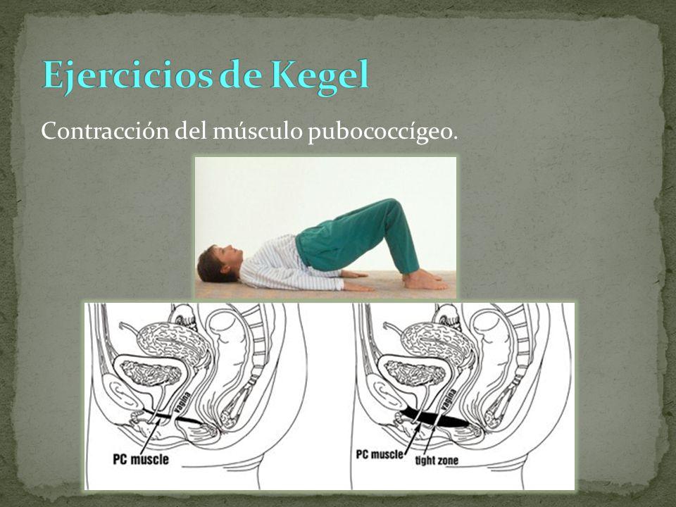 Contracción del músculo pubococcígeo.