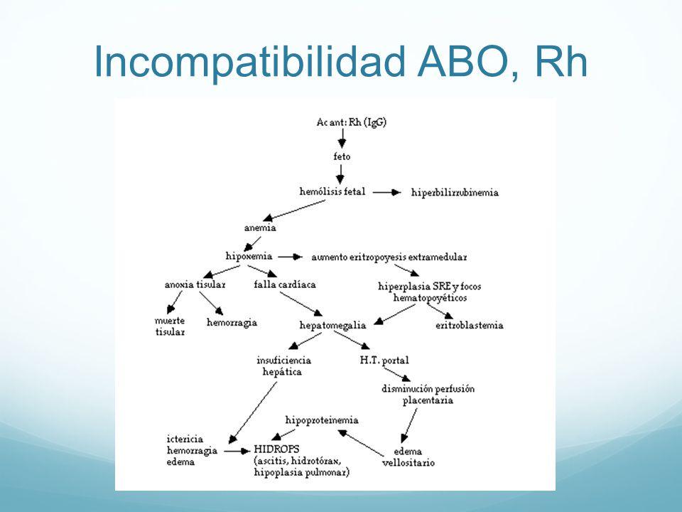 Incompatibilidad ABO, Rh