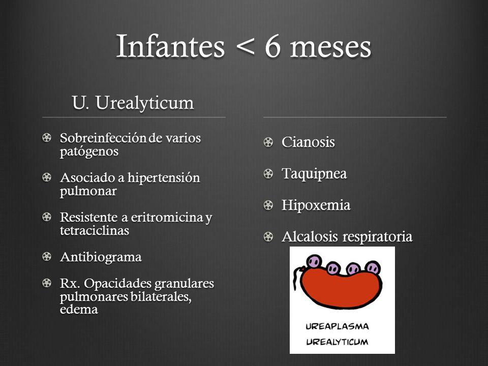Infantes < 6 meses U. Urealyticum Sobreinfección de varios patógenos Asociado a hipertensión pulmonar Resistente a eritromicina y tetraciclinas Antibi