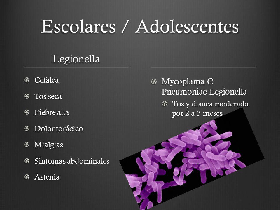 Escolares / Adolescentes Legionella Cefalea Tos seca Fiebre alta Dolor torácico Mialgias Síntomas abdominales Astenia Mycoplama C Pneumoniae Legionell