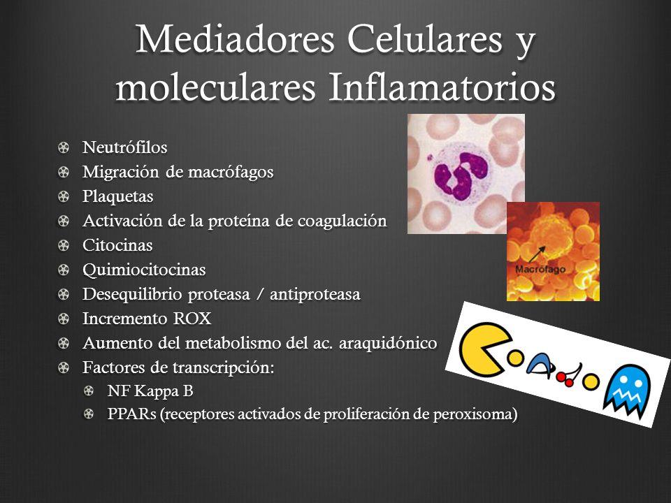 Mediadores Celulares y moleculares Inflamatorios Neutrófilos Migración de macrófagos Plaquetas Activación de la proteína de coagulación CitocinasQuimi