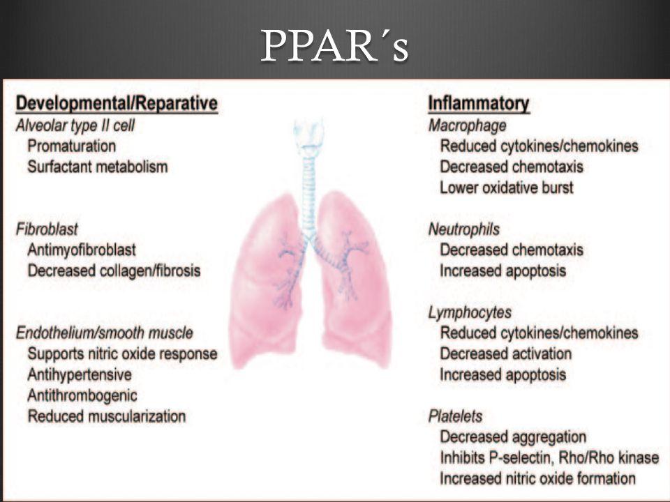Infantes < 6 meses Mortalidad 3.4% Sibilancias a largo plazo 46% Hospitalizaciones subsecuentes 16% Anormalidades radiográficas hasta el 1 año de edad 15% Anormalidades en pruebas de función pulmonar hasta los 5 años de edad 60% Incrementa la posibilidad de desarrollar una insuficiencia pulmonar posteriormente