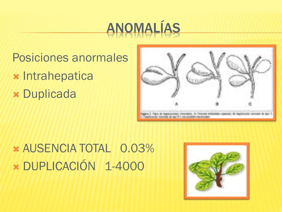 Posiciones anormales Intrahepatica Duplicada AUSENCIA TOTAL 0.03% DUPLICACIÓN 1-4000