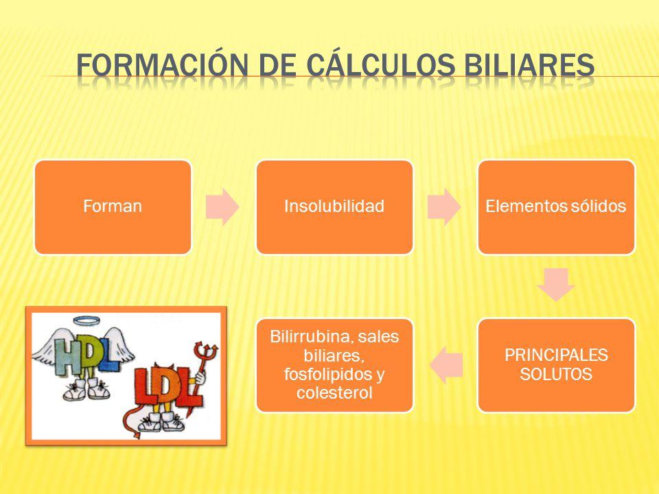 FormanInsolubilidadElementos sólidos PRINCIPALES SOLUTOS Bilirrubina, sales biliares, fosfolipidos y colesterol