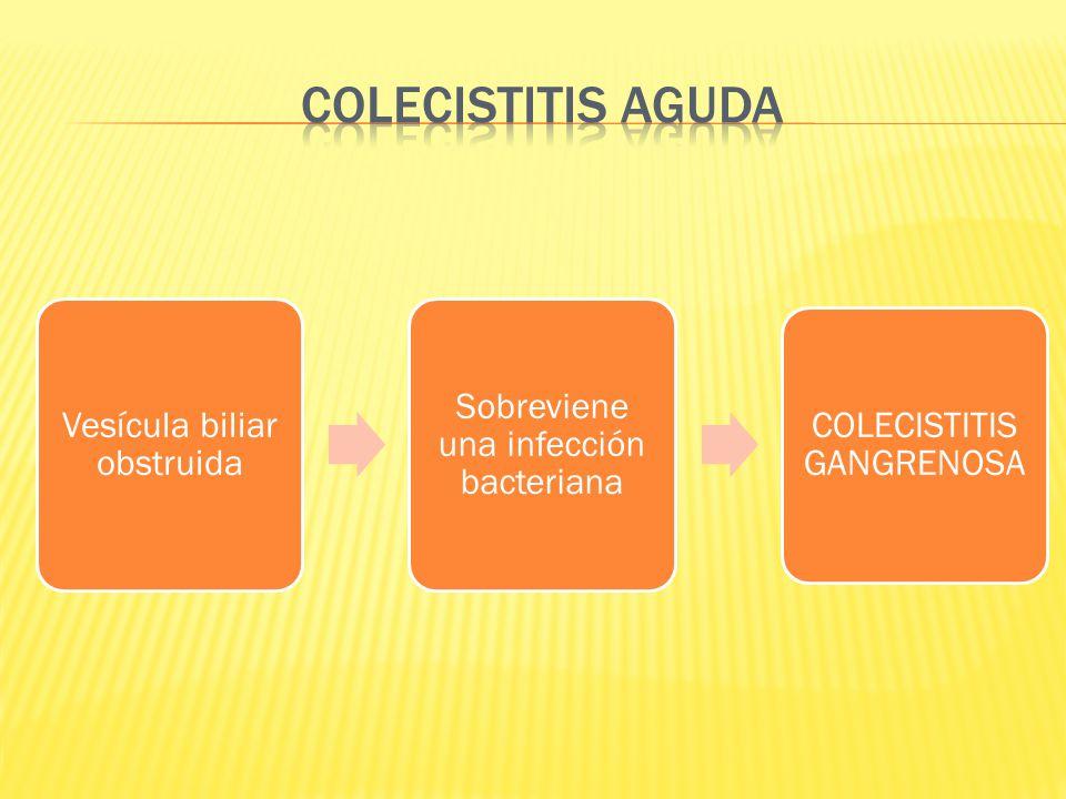 Vesícula biliar obstruida Sobreviene una infección bacteriana COLECISTITIS GANGRENOSA