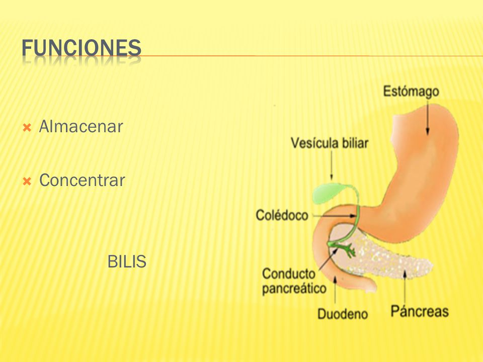 Los conductos extrabiliares se conforman con conductos biliares izquierdo y derecho.