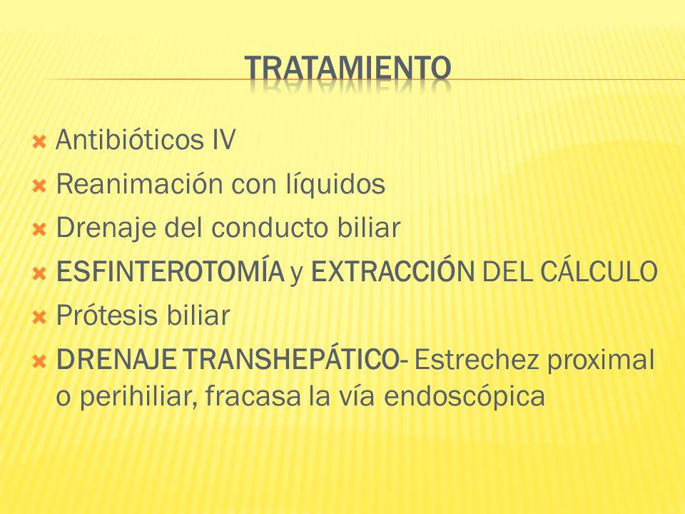 Antibióticos IV Reanimación con líquidos Drenaje del conducto biliar ESFINTEROTOMÍA y EXTRACCIÓN DEL CÁLCULO Prótesis biliar DRENAJE TRANSHEPÁTICO- Es