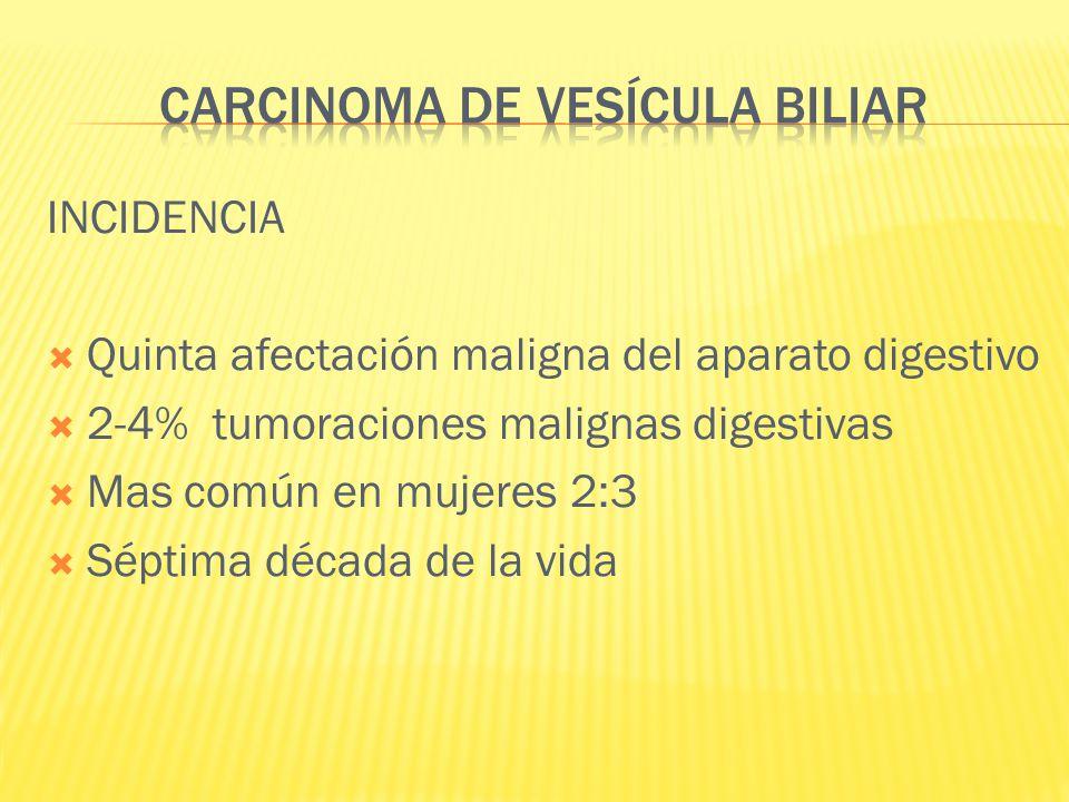 INCIDENCIA Quinta afectación maligna del aparato digestivo 2-4% tumoraciones malignas digestivas Mas común en mujeres 2:3 Séptima década de la vida
