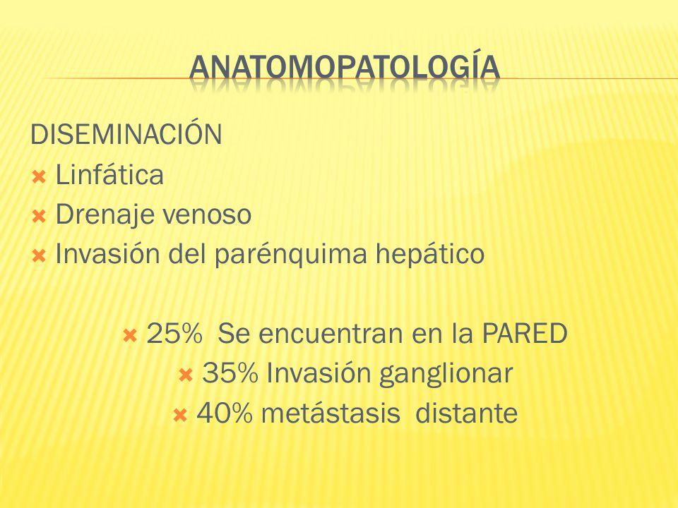 DISEMINACIÓN Linfática Drenaje venoso Invasión del parénquima hepático 25% Se encuentran en la PARED 35% Invasión ganglionar 40% metástasis distante