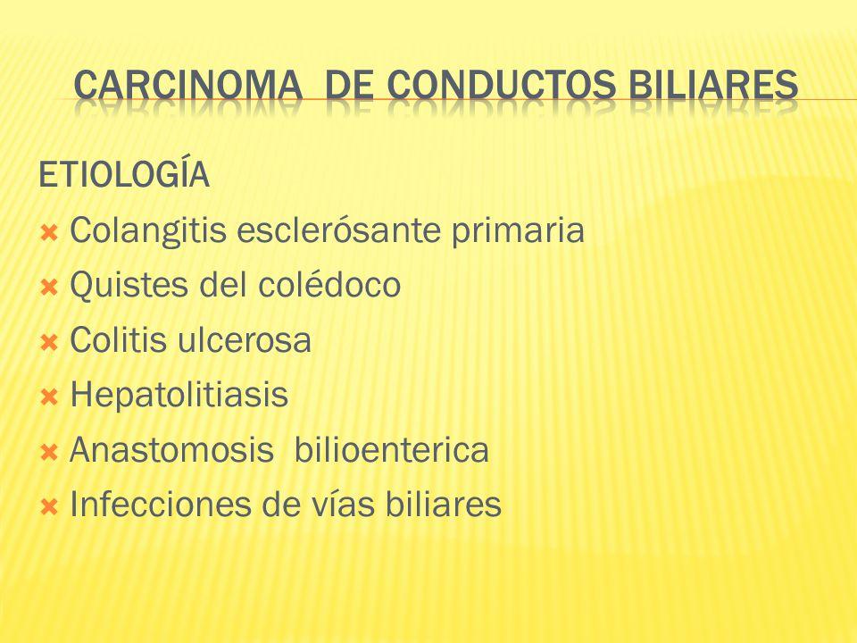 ETIOLOGÍA Colangitis esclerósante primaria Quistes del colédoco Colitis ulcerosa Hepatolitiasis Anastomosis bilioenterica Infecciones de vías biliares