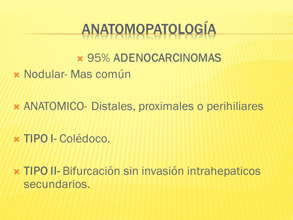95% ADENOCARCINOMAS Nodular- Mas común ANATOMICO- Distales, proximales o perihiliares TIPO I- Colédoco. TIPO II- Bifurcación sin invasión intrahepatic