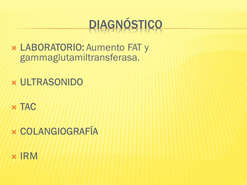 LABORATORIO: Aumento FAT y gammaglutamiltransferasa. ULTRASONIDO TAC COLANGIOGRAFÍA IRM