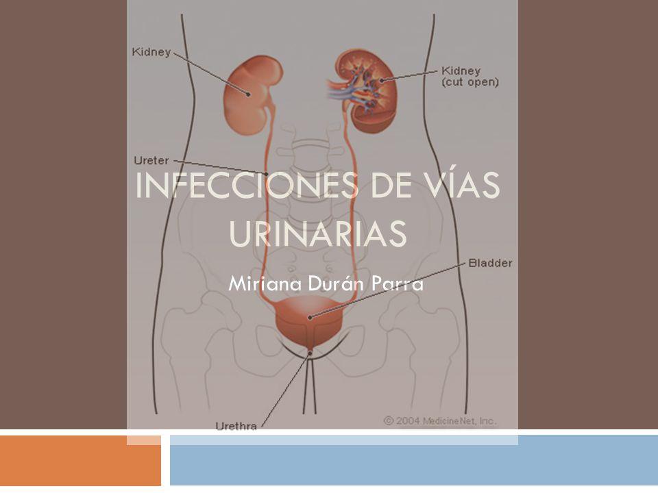 Epidemiología Mujeres: 1-4/100 Hombres: <1/100 60% mexicanas tienen al menos un episodio de infección en vías urinarias.