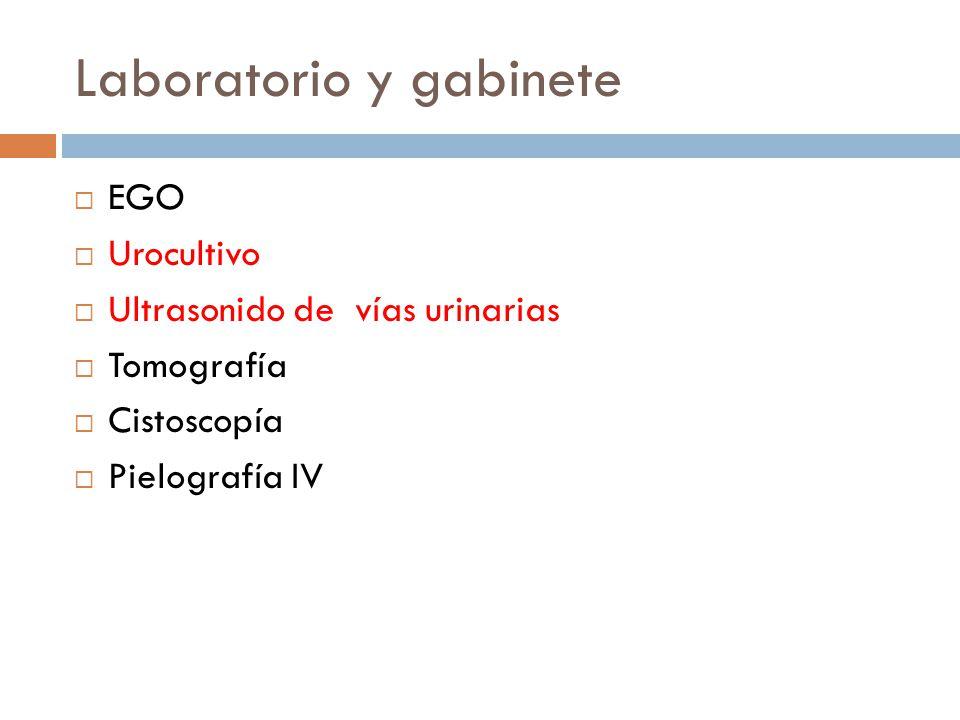 Laboratorio y gabinete EGO Urocultivo Ultrasonido de vías urinarias Tomografía Cistoscopía Pielografía IV