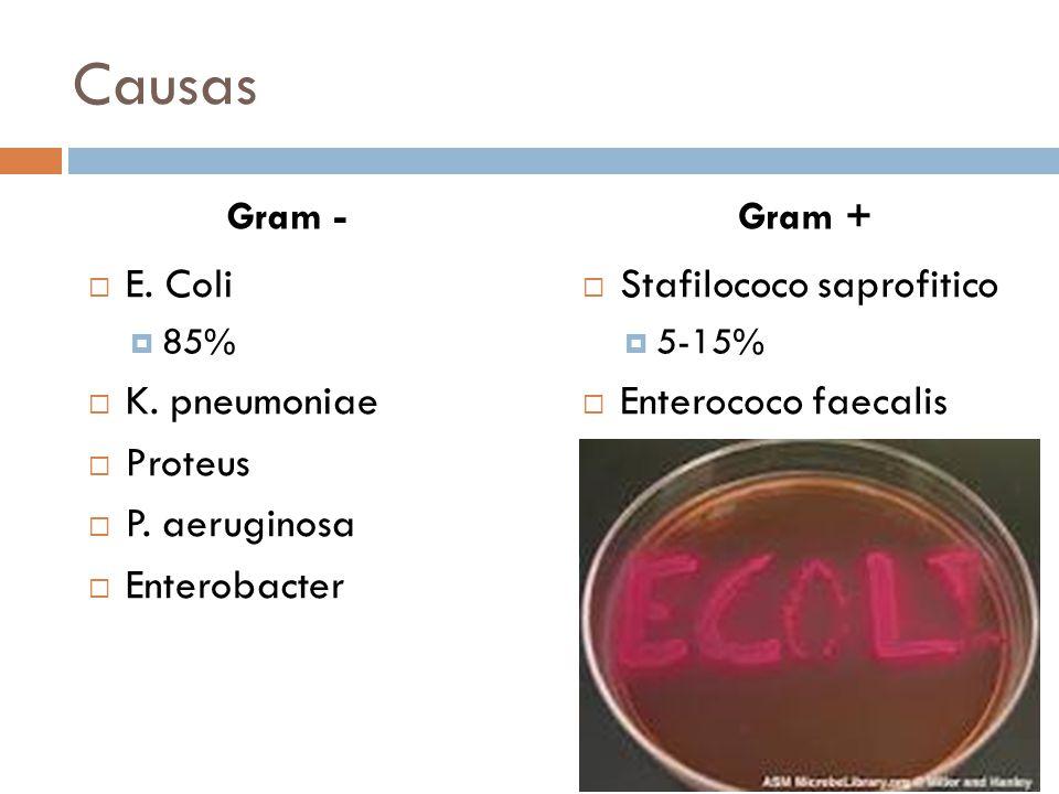 Causas Stafilococo saprofitico 5-15% Enterococo faecalis E. Coli 85% K. pneumoniae Proteus P. aeruginosa Enterobacter Gram +Gram -