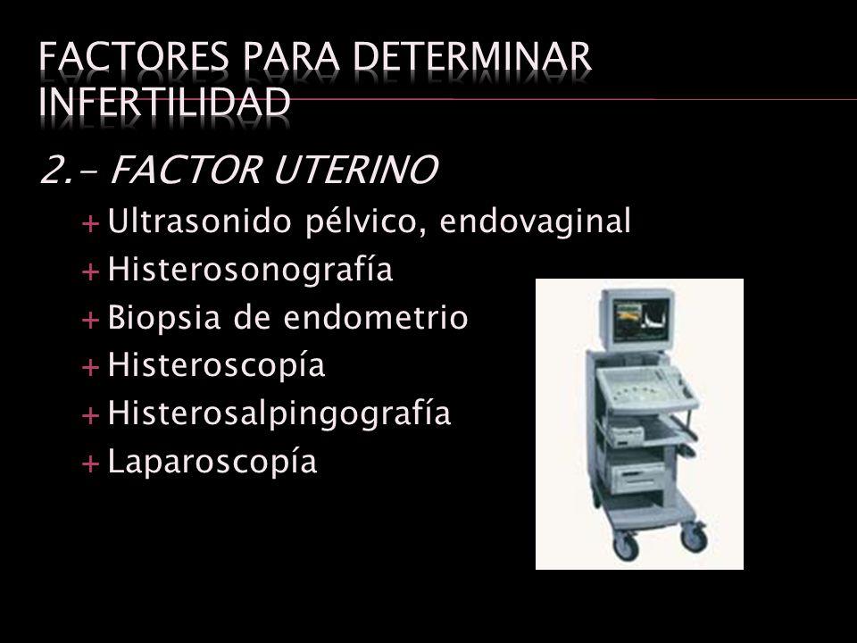 2.- FACTOR UTERINO Ultrasonido pélvico, endovaginal Histerosonografía Biopsia de endometrio Histeroscopía Histerosalpingografía Laparoscopía