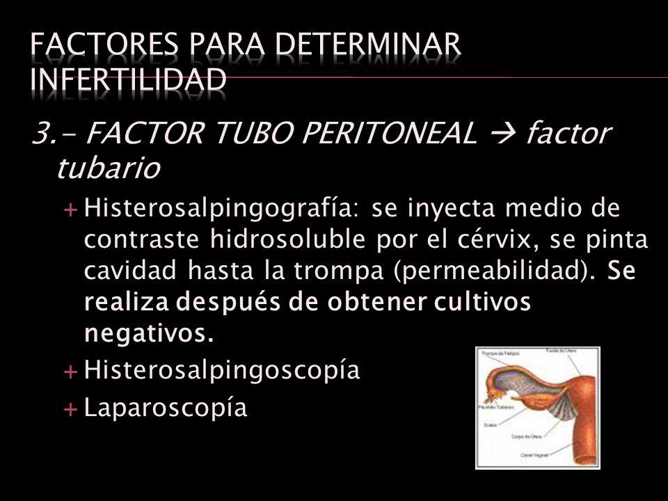 3.- FACTOR TUBO PERITONEAL factor tubario Histerosalpingografía: se inyecta medio de contraste hidrosoluble por el cérvix, se pinta cavidad hasta la t