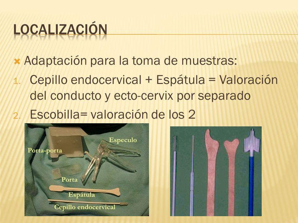 Adaptación para la toma de muestras: 1. Cepillo endocervical + Espátula = Valoración del conducto y ecto-cervix por separado 2. Escobilla= valoración