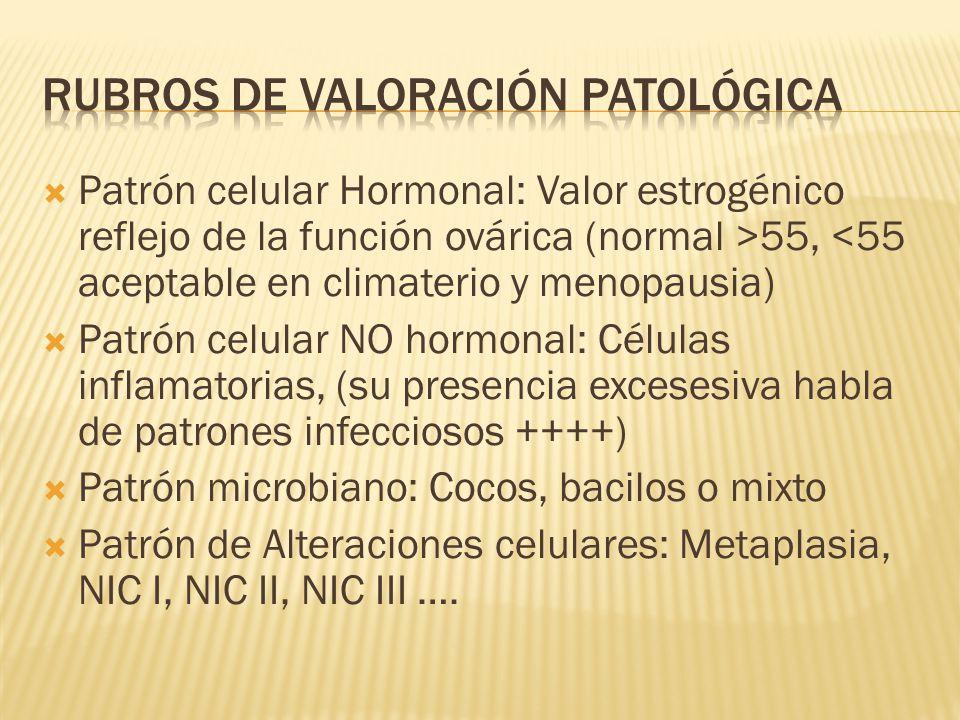 Patrón celular Hormonal: Valor estrogénico reflejo de la función ovárica (normal >55, <55 aceptable en climaterio y menopausia) Patrón celular NO horm