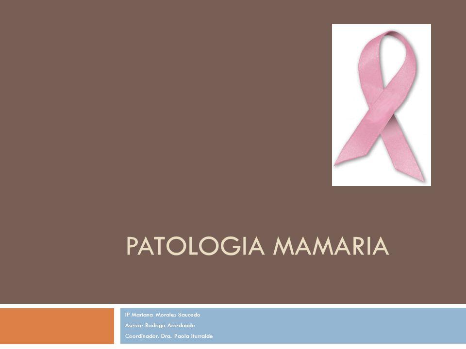 PATOLOGIA MAMARIA IP Mariana Morales Saucedo Asesor: Rodrigo Arredondo Coordinador: Dra. Paola Iturralde