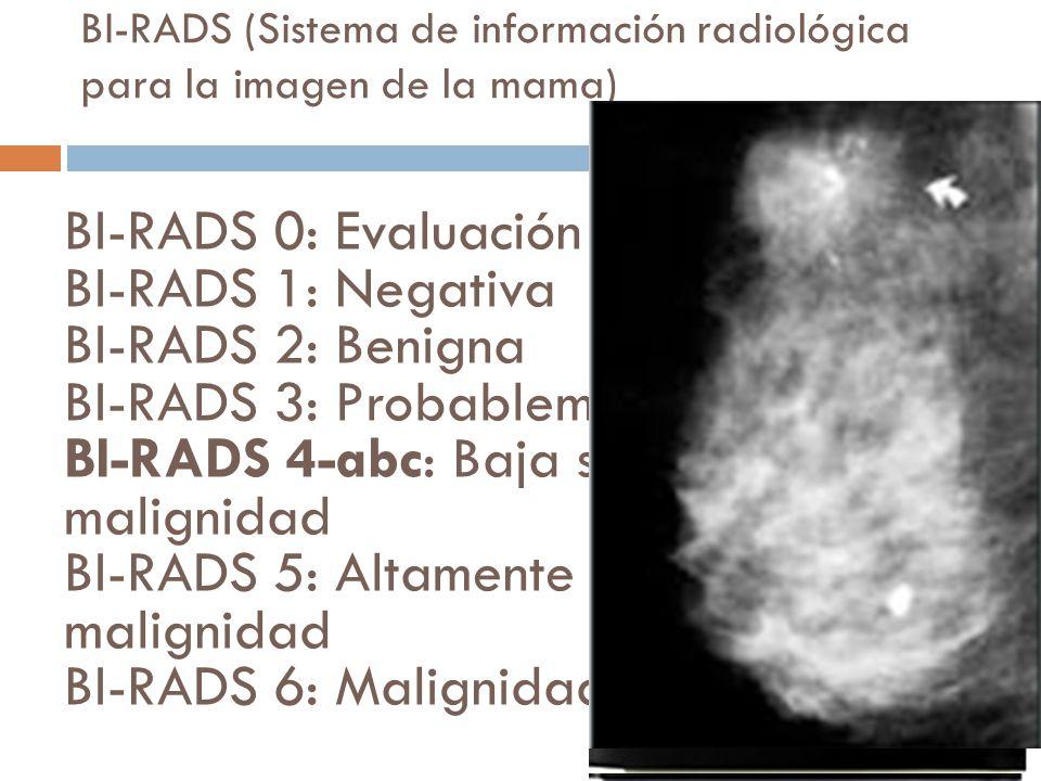 BI-RADS (Sistema de información radiológica para la imagen de la mama) BI-RADS 0: Evaluación adicional BI-RADS 1: Negativa BI-RADS 2: Benigna BI-RADS 3: Probablemente benigna BI-RADS 4-abc: Baja sospecha de malignidad BI-RADS 5: Altamente sugestiva de malignidad BI-RADS 6: Malignidad conocida