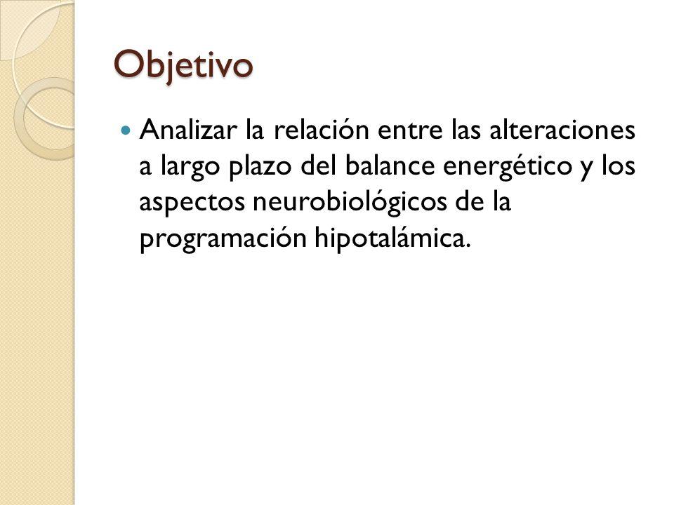 Objetivo Analizar la relación entre las alteraciones a largo plazo del balance energético y los aspectos neurobiológicos de la programación hipotalámi