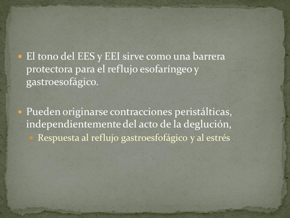 El tono del EES y EEI sirve como una barrera protectora para el reflujo esofaríngeo y gastroesofágico. Pueden originarse contracciones peristálticas,