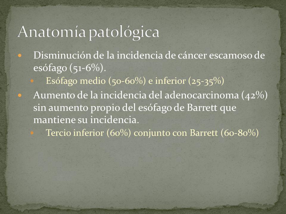 Disminución de la incidencia de cáncer escamoso de esófago (51-6%). Esófago medio (50-60%) e inferior (25-35%) Aumento de la incidencia del adenocarci