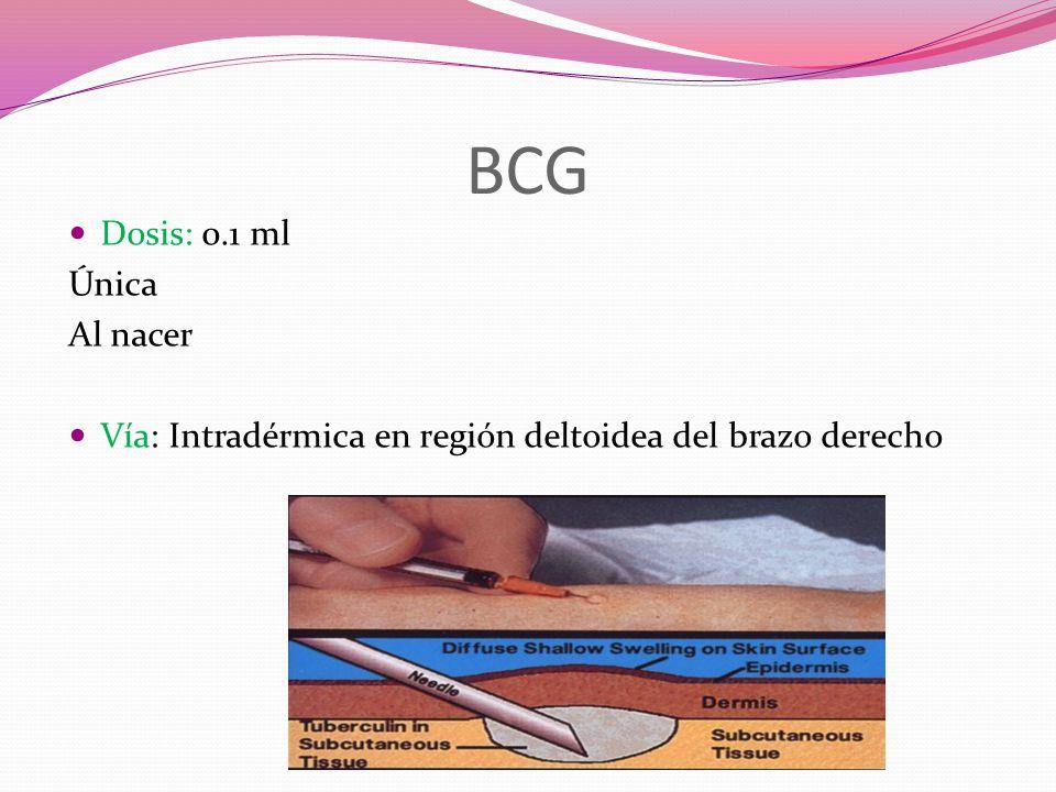 BCG Dosis: 0.1 ml Única Al nacer Vía: Intradérmica en región deltoidea del brazo derecho