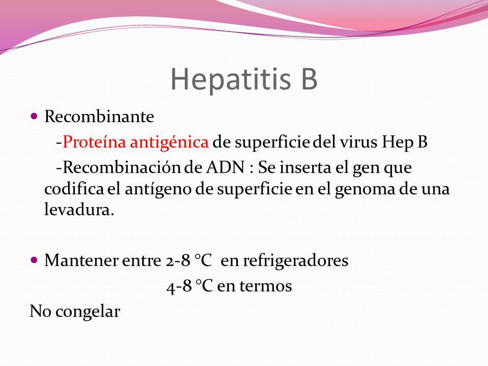 Hepatitis B Recombinante -Proteína antigénica de superficie del virus Hep B -Recombinación de ADN : Se inserta el gen que codifica el antígeno de supe