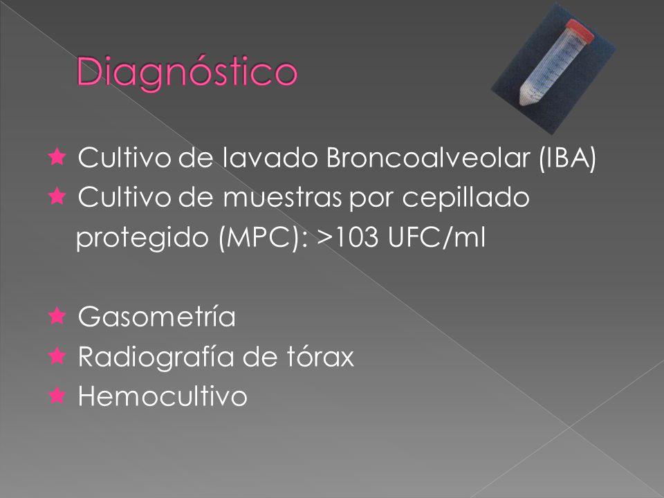 Cultivo de lavado Broncoalveolar (IBA) Cultivo de muestras por cepillado protegido (MPC): >103 UFC/ml Gasometría Radiografía de tórax Hemocultivo
