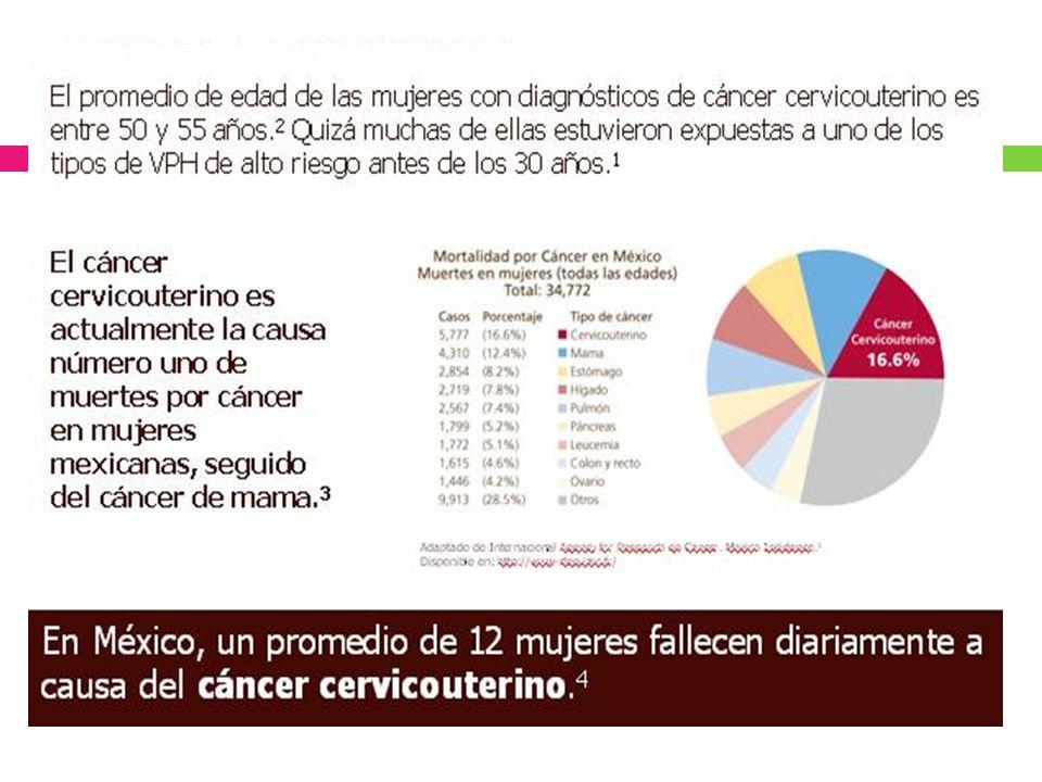 Factores de Riesgo Infección VPH Papanicolaou anormal.