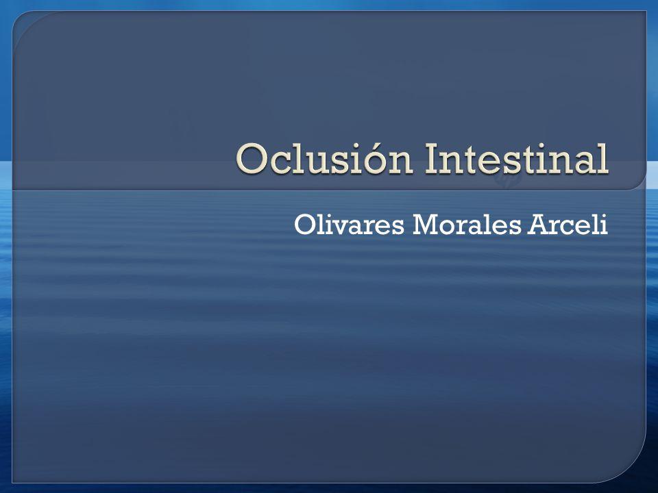 Olivares Morales Arceli