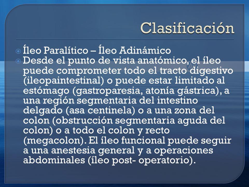 Íleo Paralítico – Íleo Adinámico Desde el punto de vista anatómico, el íleo puede comprometer todo el tracto digestivo (ileopaintestinal) o puede estar limitado al estómago (gastroparesia, atonía gástrica), a una región segmentaria del intestino delgado (asa centinela) o a una zona del colon (obstrucción segmentaria aguda del colon) o a todo el colon y recto (megacolon).
