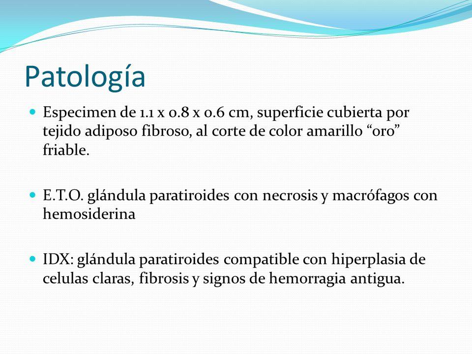 Patología Especimen de 1.1 x 0.8 x 0.6 cm, superficie cubierta por tejido adiposo fibroso, al corte de color amarillo oro friable.