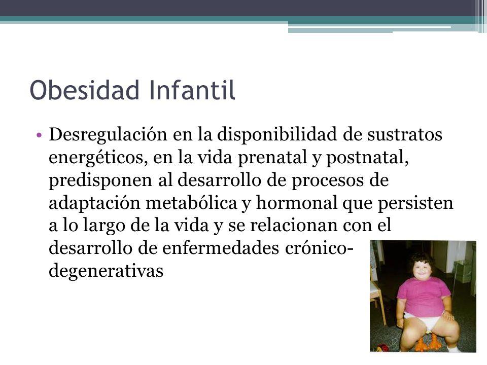 Obesidad Infantil Desregulación en la disponibilidad de sustratos energéticos, en la vida prenatal y postnatal, predisponen al desarrollo de procesos