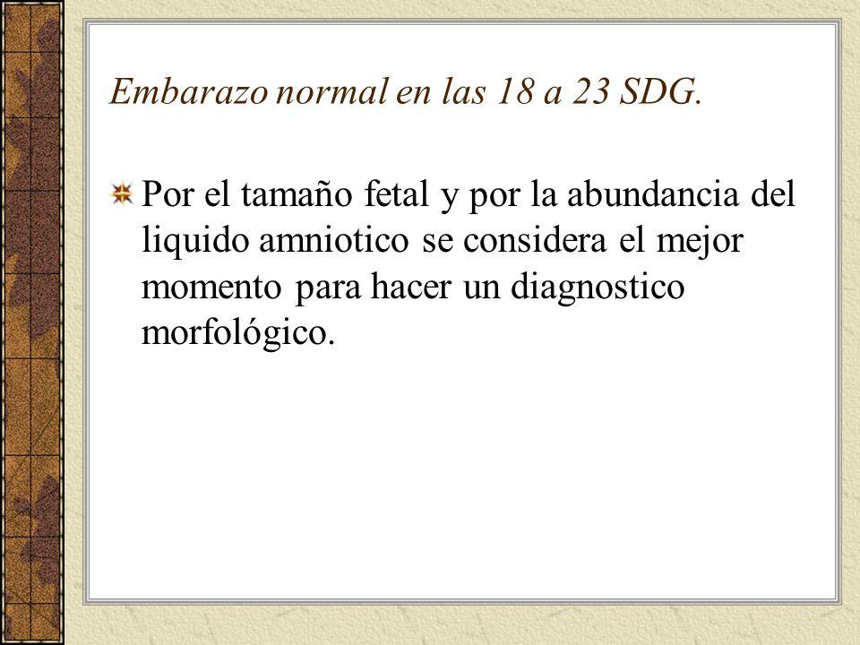 Sistemática del USG del 2º trimestre 1.Numero de fetos 2.Situación, presentación y posición 3.Vitalidad fetal 4.Biometría fetal 1.DBP 2.CC 3.CA 4.LF 5.Placenta y cordón 6.Liquido amniótico 7.Anatomia fetal Bajo Arenas, Ultrasonografia obstetrica.España p 18-19