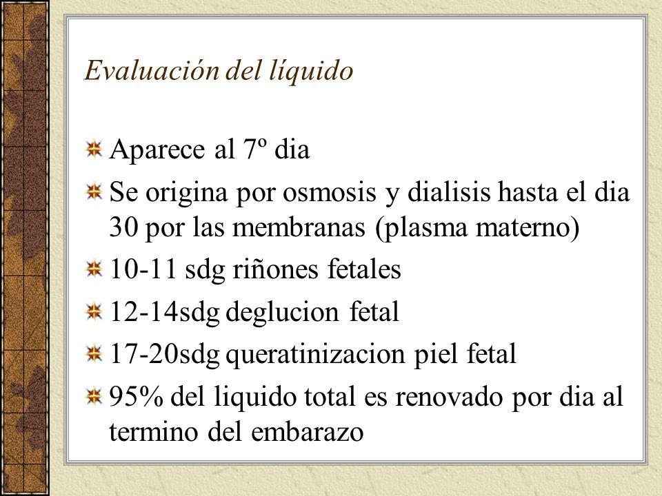 Evaluación del líquido Aparece al 7º dia Se origina por osmosis y dialisis hasta el dia 30 por las membranas (plasma materno) 10-11 sdg riñones fetale