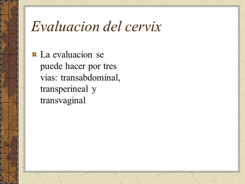 Evaluacion del cervix La evaluacion se puede hacer por tres vias: transabdominal, transperineal y transvaginal