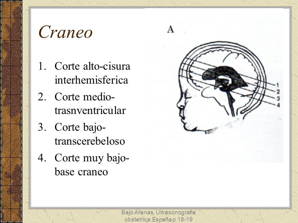Corte alto Cisura interhemisferica Hoz del cerebro Cuerpos ventriculos laterales (plexos coroideos) Bajo Arenas, Ultrasonografia obstetrica.España p 18-19