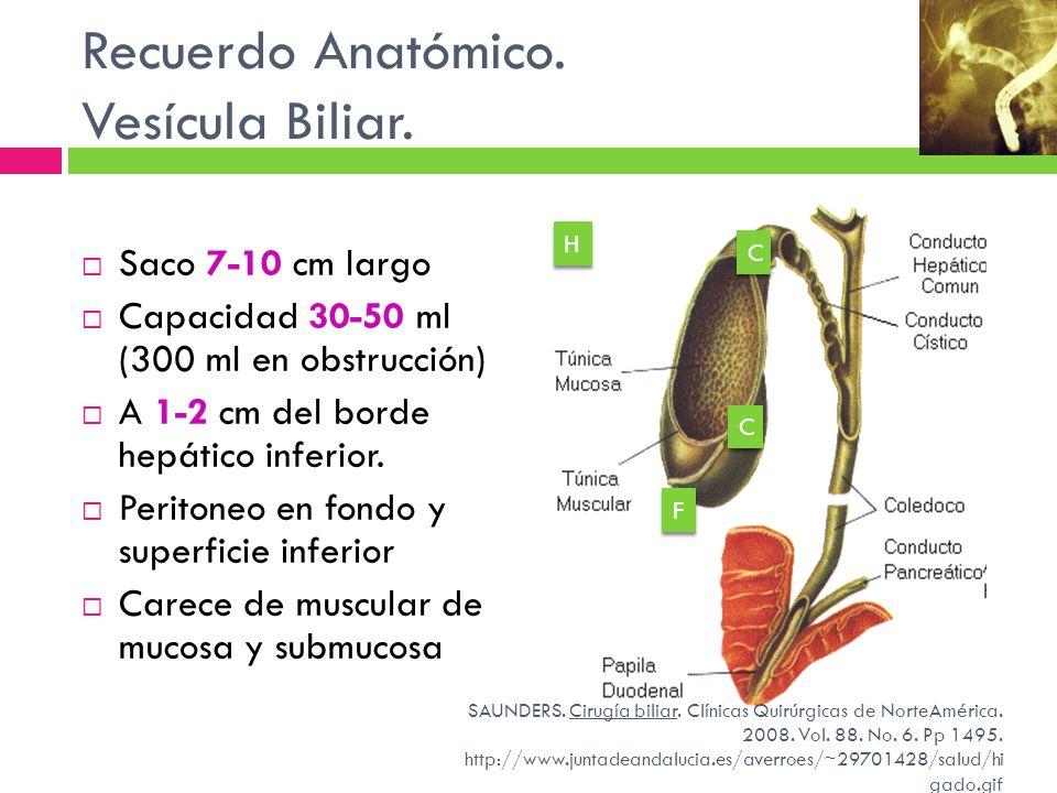 Recuerdo Anatómico. Vesícula Biliar. Saco 7-10 cm largo Capacidad 30-50 ml (300 ml en obstrucción) A 1-2 cm del borde hepático inferior. Peritoneo en
